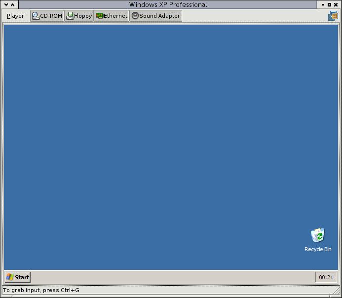 Windows in a VM